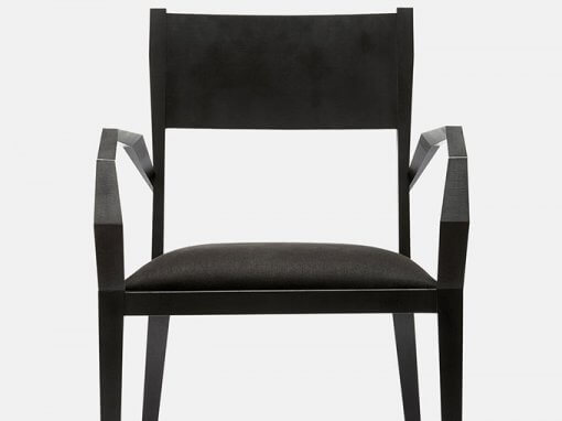 Odonate chair